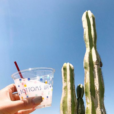 This pic is giving us #Coachella2017 vibes, @theradlife.la! Did you know that this tumbler is a new addition to our essentials line? This smaller cup is a great option for wine and cocktails. Bottoms up!  It's Fan Post Friday! Share your #WhitforCheeky posts and we'll share our favorites. Check our stories for more!