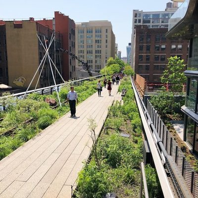 Have you been to the High Line yet this spring? Find the best things to do there at the link in our bio! (📷 @pdx2nyc)