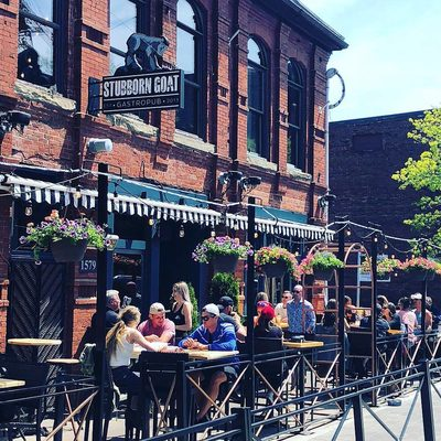 Patio season has arrived - especially at the Stubborn Goat's dreamy outdoor oasis in Downtown Halifax ☀ . Go to the link in our bio and tap this image to find out how to get on this patio ASAP! 😎🍹 . 📷: @thestubborngoat