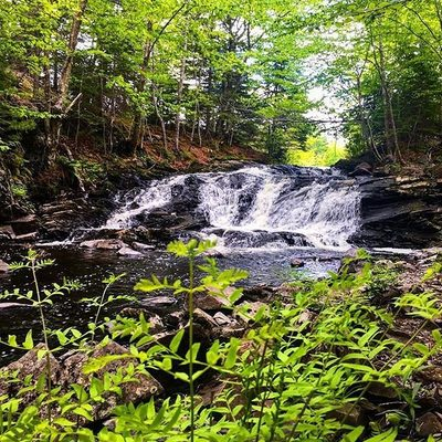 Fall River certainly lives up to its name 🏞 #DiscoverHalifax . Check out 5 of our FAVOURITE WATERFALLS IN THE HALIFAX REGION: go to the link in our bio and tap this image to chase those falls 🌊 . 📷: @halifaxlogan