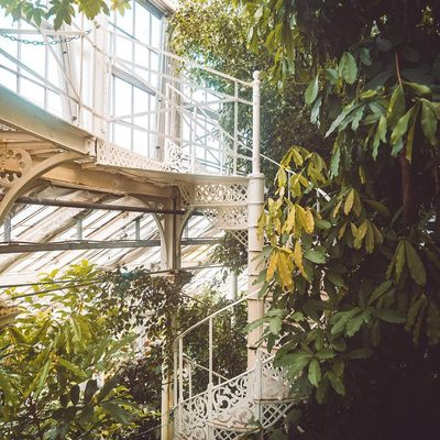 Have you visited Copenhagen's Botanical Garden in the centre of the city. The garden covers an area of 10 hectares and is particularly noted for its extensive complex of historical glasshouses dating from 1874.