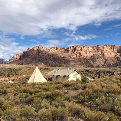 You could be here ⛺ Head to our link in bio for the chance to win the ultimate Zion glamping experience. Here's what you'd win: 📍Two nights in a Deluxe Tent for two at @undercanvasofficial Zion 📍$1000 Spiritual Gangster gift card 📍Over $180 of high vibe essentials from @sundayforevernyc  #roadtrip #giveaway #spiritualgangster